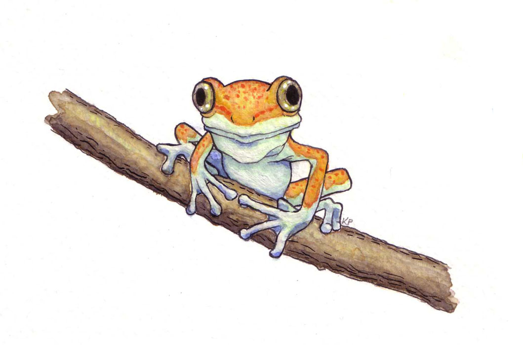 treefrog_