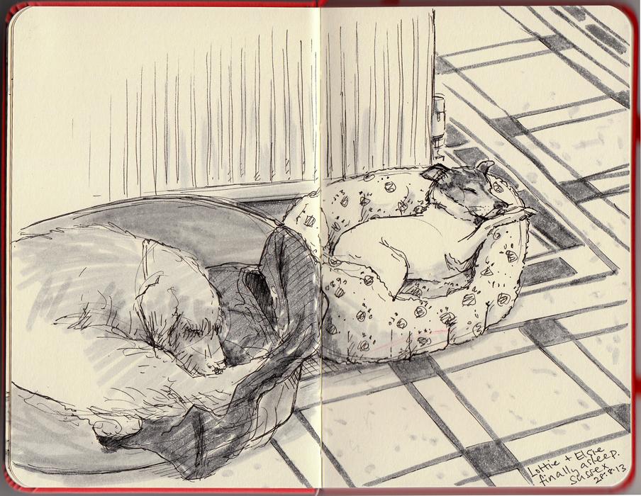 dogsaug13_